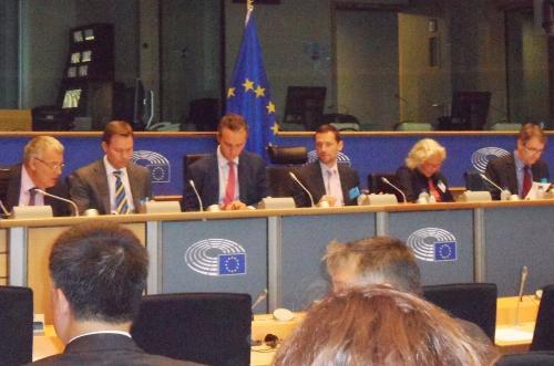 Osteopathie im EU-Parlament