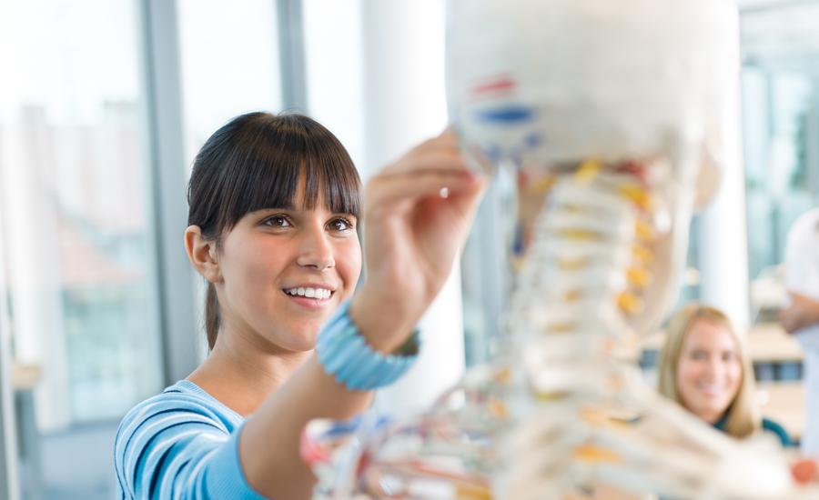 Osteopathie Berufsbild